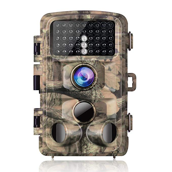 Camouflage hunting cam.