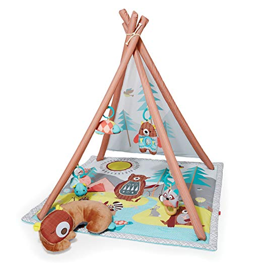 Baby camping activity gym and play mat.