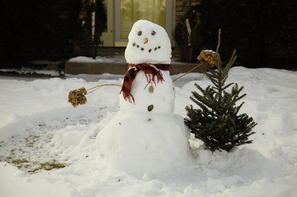 Snowman with scarf next to miniature fur tree.