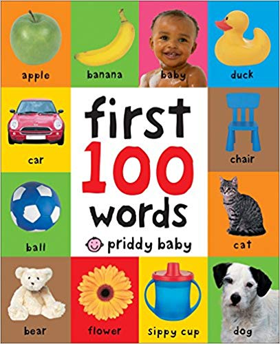 First 100 Words book for kids.