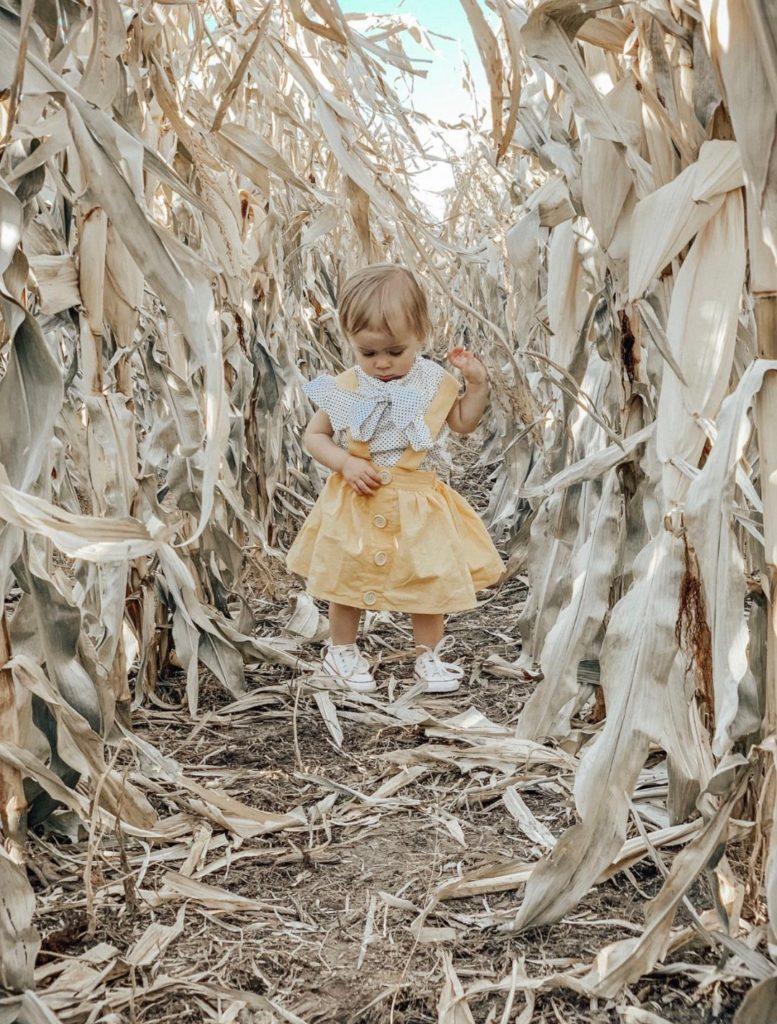 Little girl plays on path of corn maze.